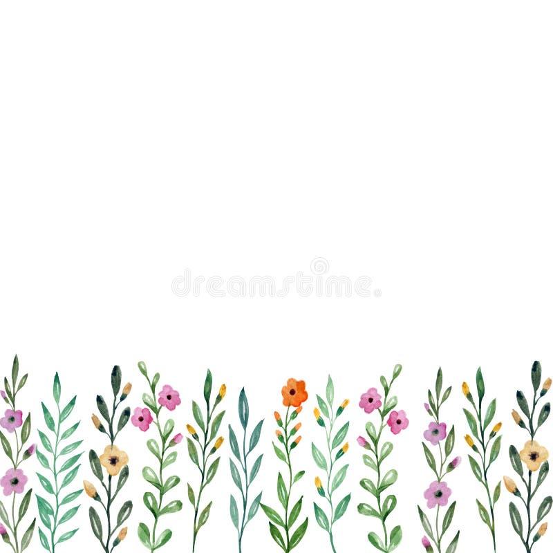 Fundo com flores e plantas Desenho da aguarela ilustração stock