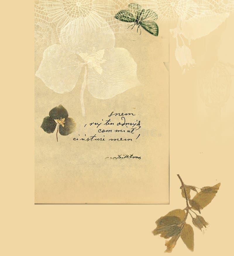 Fundo com folhas e a borboleta secadas ilustração do vetor