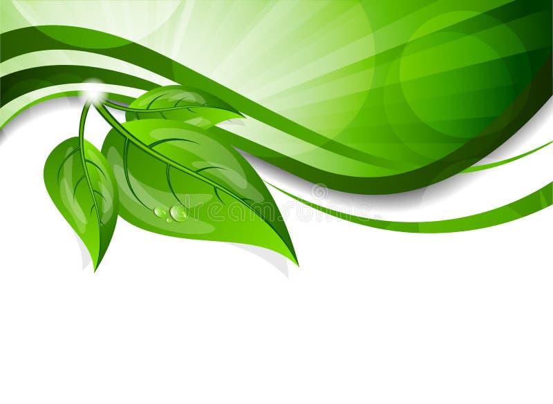Fundo com folhas verdes ilustração stock