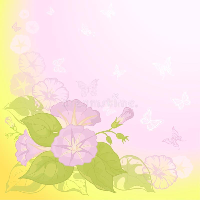 Fundo com Ipomoea das flores ilustração royalty free