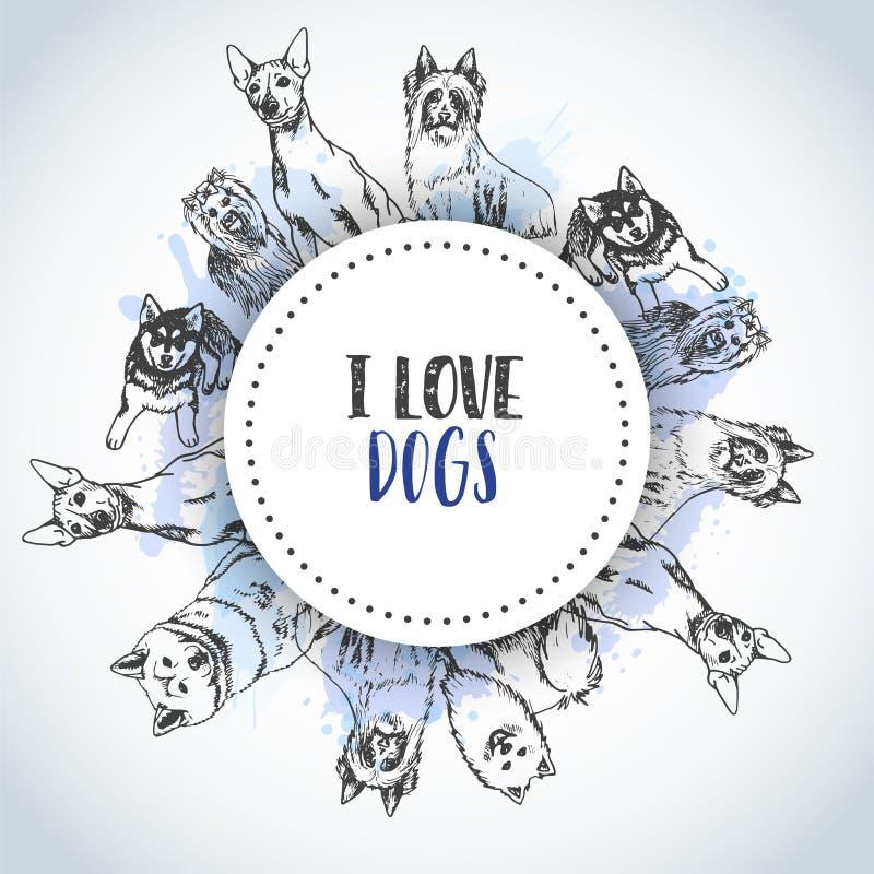 Fundo com raças tiradas mão dos cães Esboço do cão Cartaz com o buldogue francês do texto do cão do amor de I, bassê, ronco ilustração royalty free