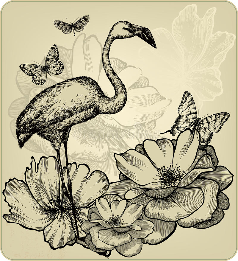 Fundo com rosas de florescência, flami do vintage do pássaro ilustração royalty free