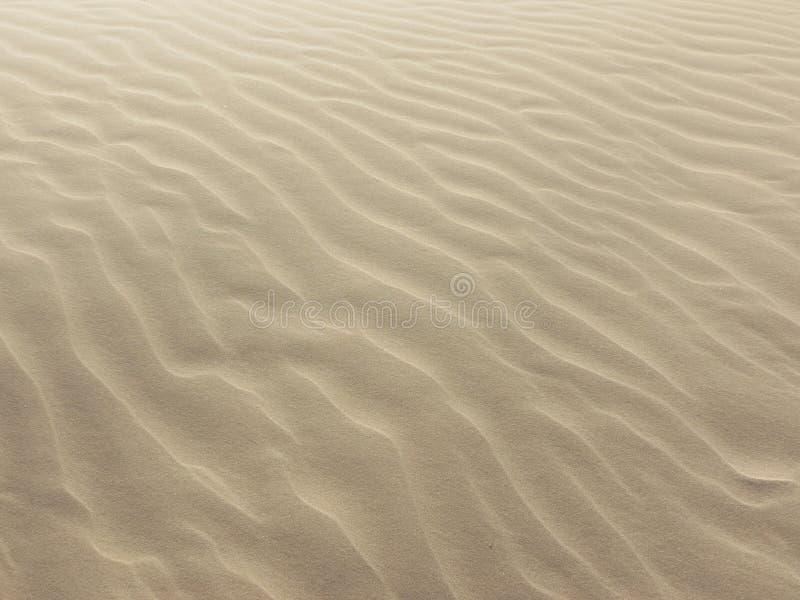 Fundo com textura da areia fotos de stock royalty free