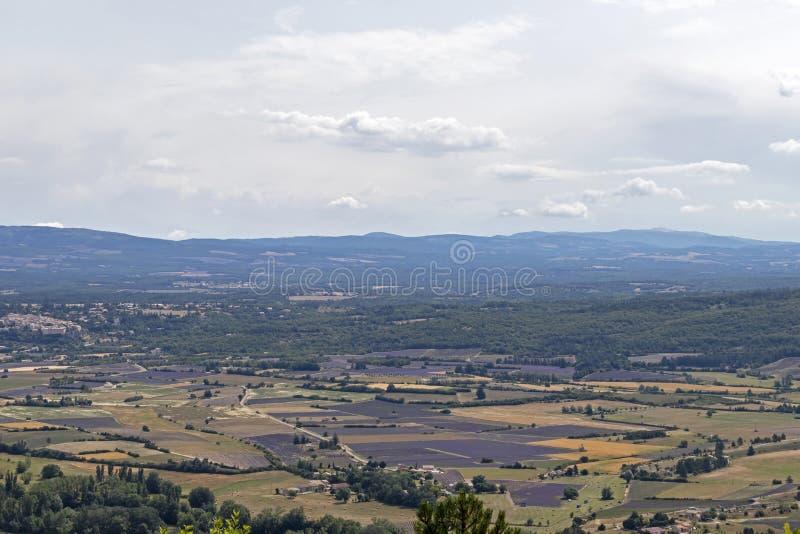 Fundo com vista aérea em campos da alfazema em Provence, ao sul de França imagem de stock