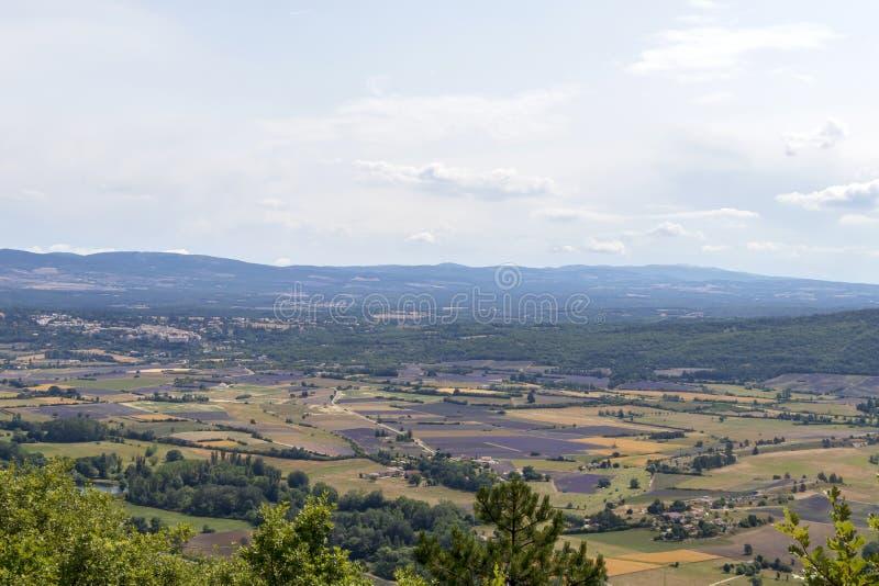 Fundo com vista aérea em campos da alfazema em Provence, ao sul de França fotos de stock royalty free