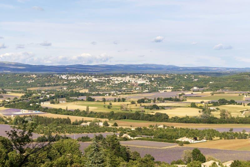 Fundo com vista aérea em campos da alfazema em Provence, ao sul de França imagens de stock