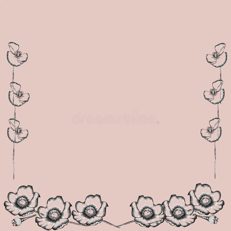 Fundo cor-de-rosa bonito botânico da flor com papoilas e flor-botão ilustração royalty free