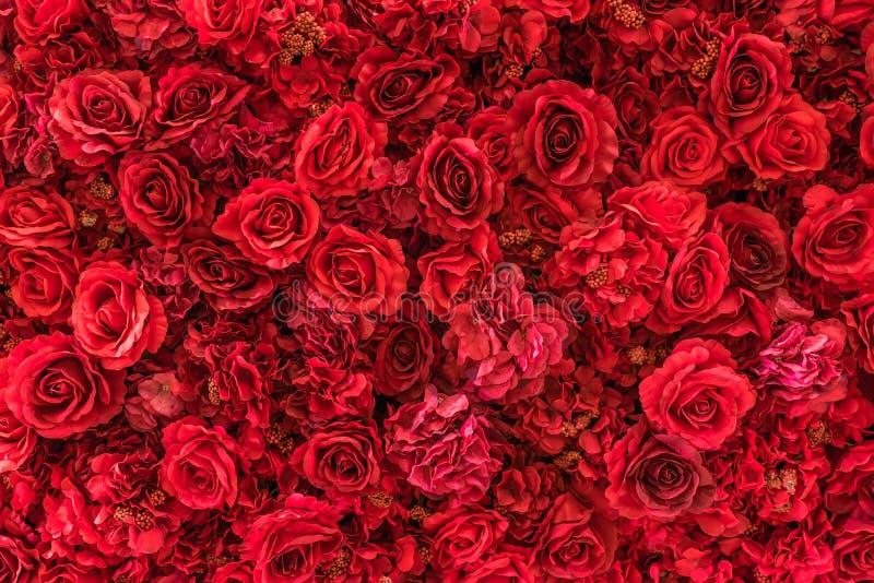 Fundo cor-de-rosa da tela foto de stock royalty free