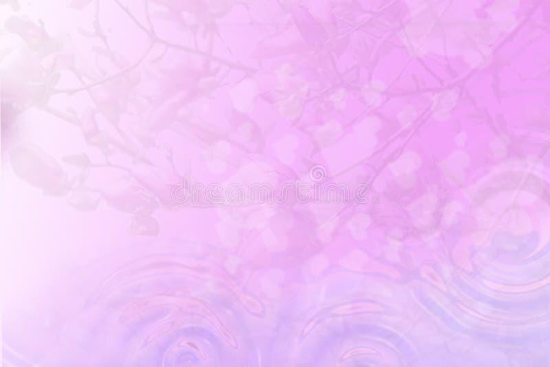 Fundo cor-de-rosa das flores da mola foto de stock royalty free