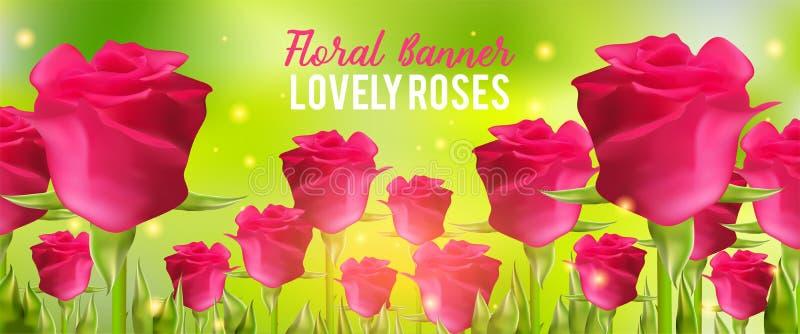 Fundo cor-de-rosa das rosas, flores realísticas e folhas do verde Ilustração rloral do vetor do aroma Bandeira do verão ilustração royalty free