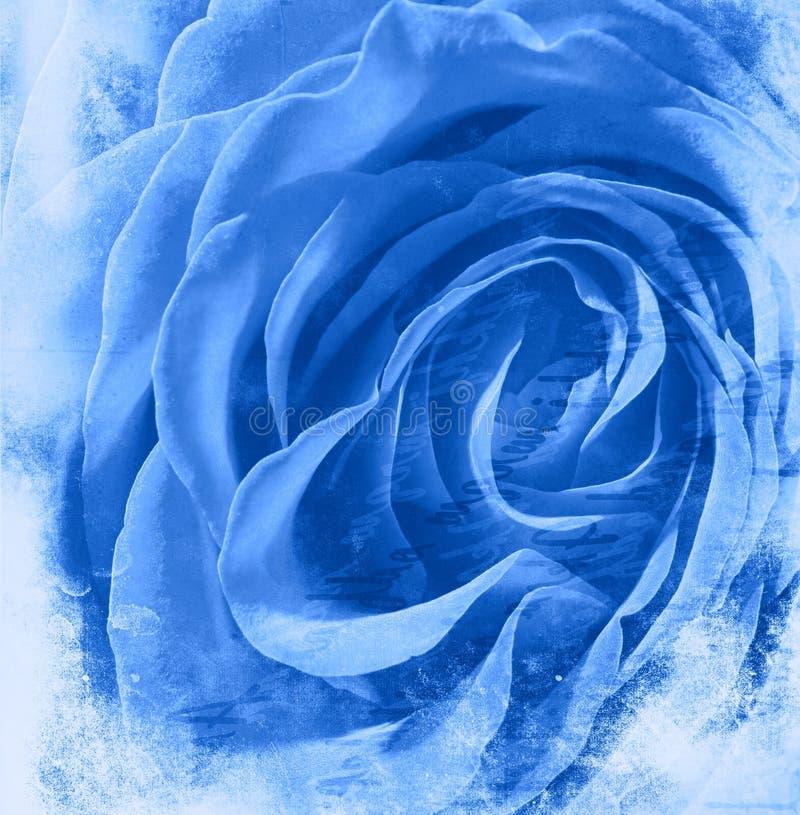 Fundo cor-de-rosa do azul ilustração stock