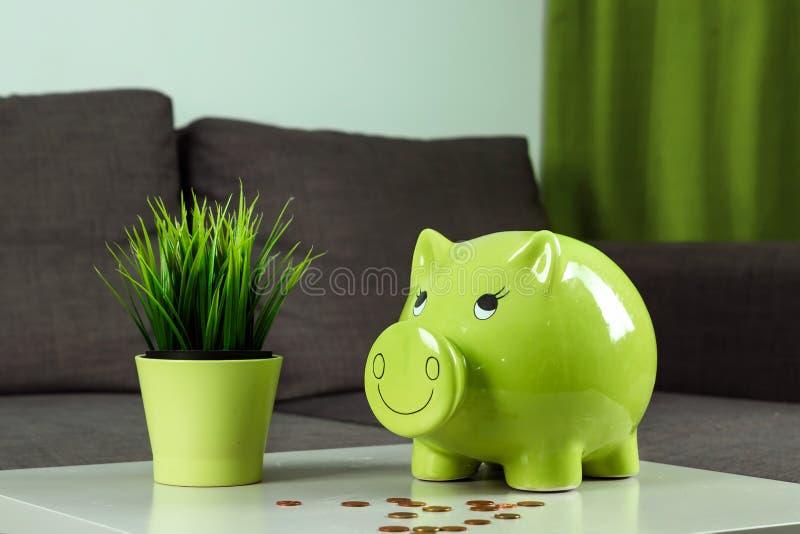 Fundo criativo, caixa de dinheiro verde do porco no fundo cinzento O conceito do dinheiro de salvamento, economias, porco leitão fotos de stock