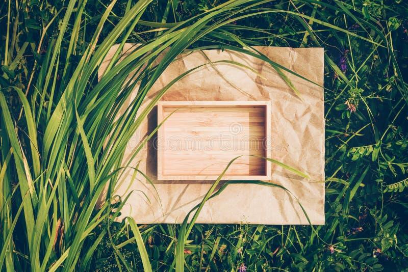 Fundo criativo das plantas, quadro do papel de embalagem e caixa da madeira Conceito de cosméticos e de produtos naturais fotografia de stock