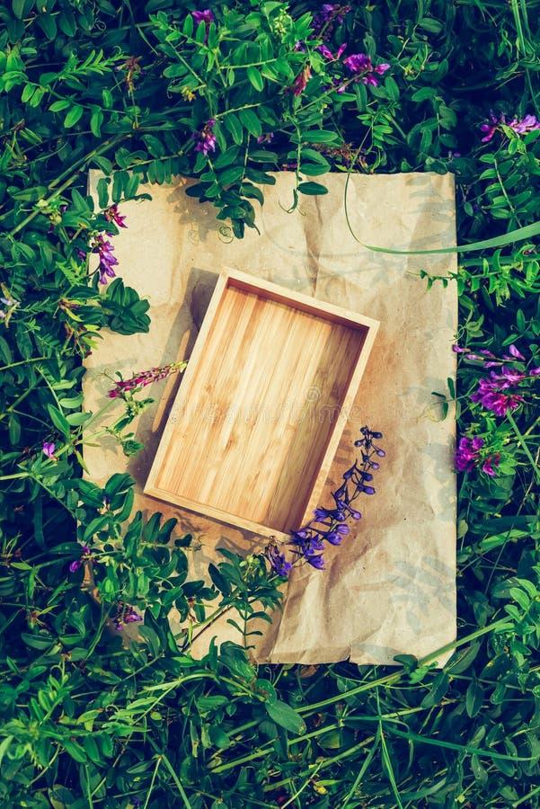 Fundo criativo das plantas, quadro do papel de embalagem e caixa da madeira Conceito de produto do vegetariano imagens de stock