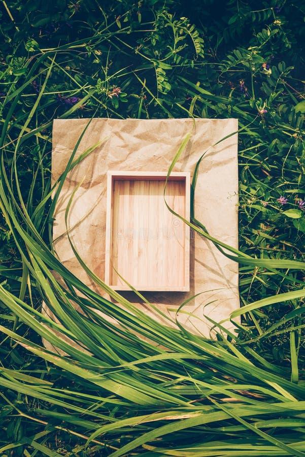Fundo criativo das plantas, quadro do papel de embalagem e caixa da madeira Conceito de produto do vegetariano fotografia de stock