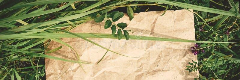 Fundo criativo do papel do ofício na grama natural verde Conceito de produtos ecológicos, bandeira da natureza foto de stock royalty free
