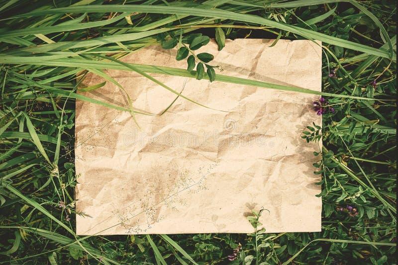 Fundo criativo do papel do ofício na grama natural verde Conceito de produtos ecológicos, natureza imagens de stock