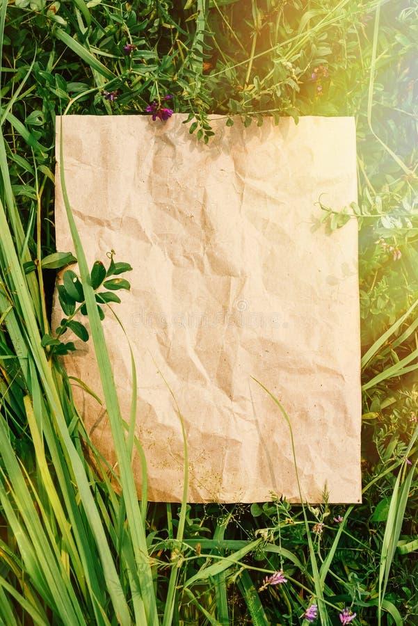 Fundo criativo do papel do ofício na grama natural verde Conceito de produtos ecológicos, natureza imagem de stock royalty free