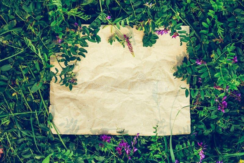 Fundo criativo do papel do ofício na grama natural verde O conceito de produtos ecológicos, natureza fotografia de stock