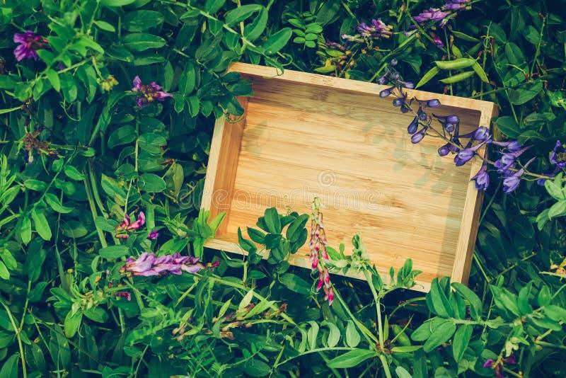 Fundo criativo do papel do ofício na grama natural verde O conceito de produtos ecológicos, natureza foto de stock royalty free