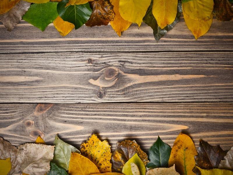 Fundo criativo para seu texto das folhas de outono caídas em uma tabela de madeira Copie o espaço fotos de stock