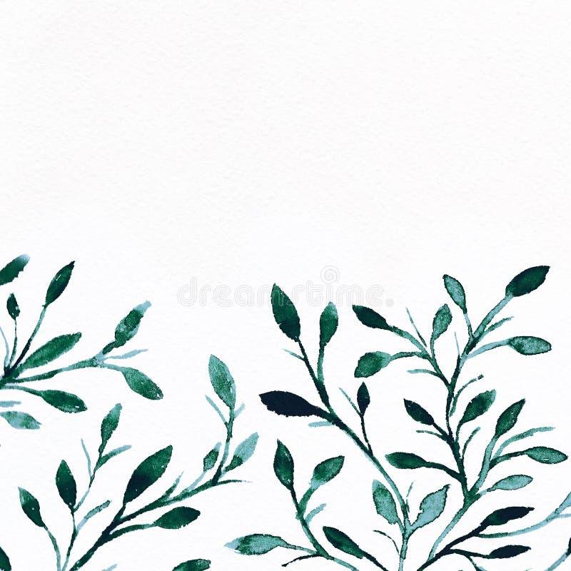 Fundo da aguarela Imagem da flor imagens de stock royalty free
