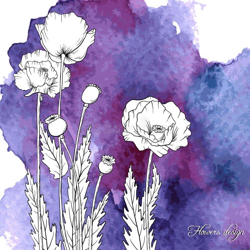 Fundo da aquarela do vetor com flores da papoila ilustração stock