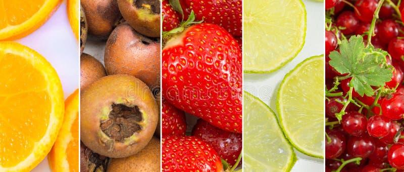 Fundo da colagem do fruto fresco foto de stock