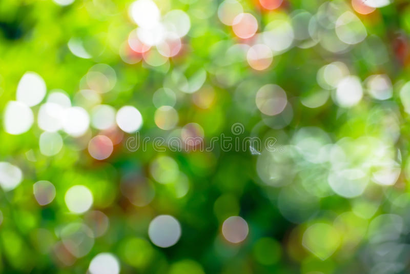 Fundo da cor verde do bokeh da mola natural foto de stock royalty free