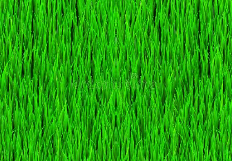 Fundo da correcção de programa da grama verde ilustração royalty free