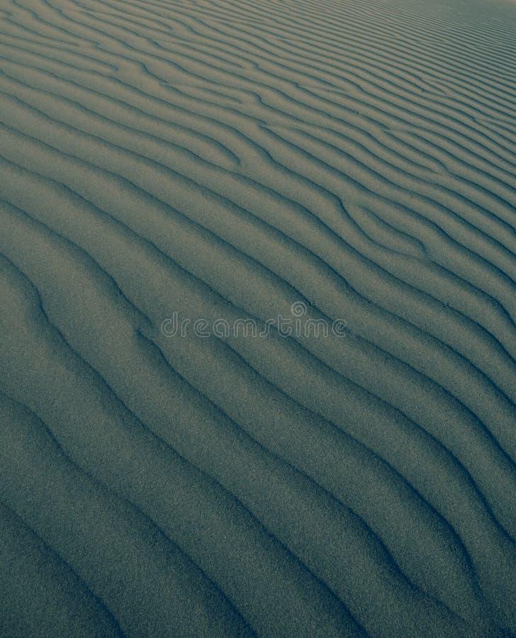 Fundo da duna imagens de stock