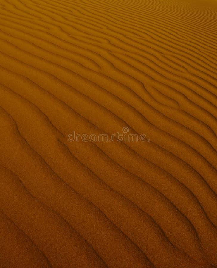 Fundo da duna fotografia de stock royalty free