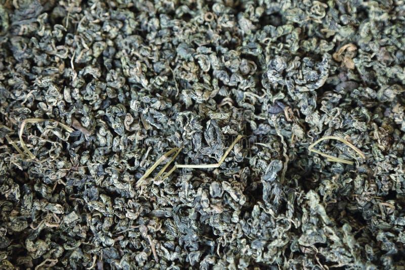 fundo da erva secada Jiaogulan ou da grama do milagre foto de stock royalty free
