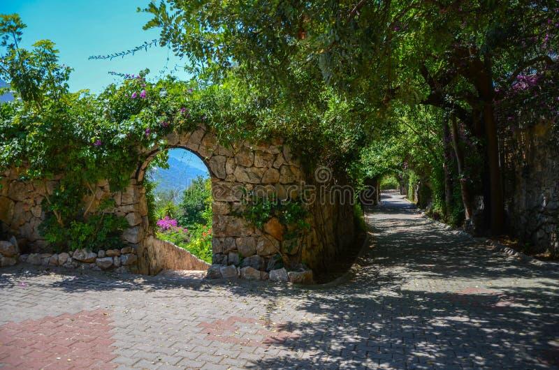 Fundo da fantasia Jardim mágico com estrada La bonito da mola fotografia de stock