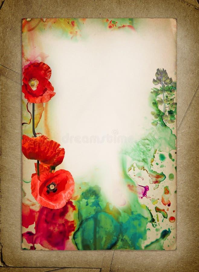Fundo da flor da aquarela Papel velho Colagem feita das fotos das papoilas e da aquarela imagens de stock royalty free