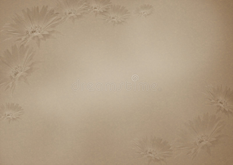 Fundo da flor de Brown com textura foto de stock royalty free
