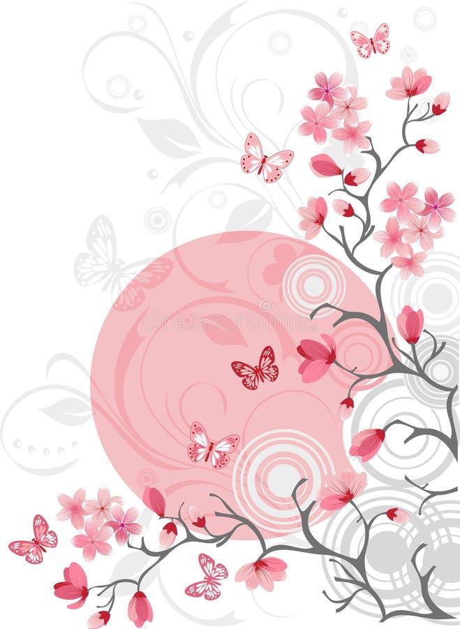Fundo da flor de cereja imagens de stock