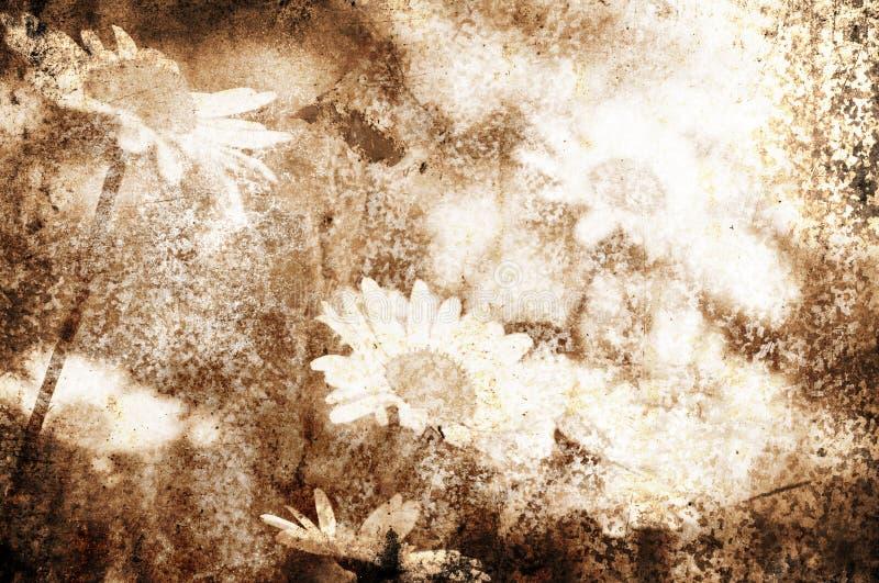 Fundo da flor de Grunge foto de stock
