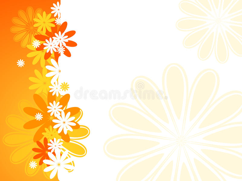 Fundo da flor do verão ilustração do vetor