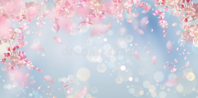 Fundo da flor da mola ilustração royalty free