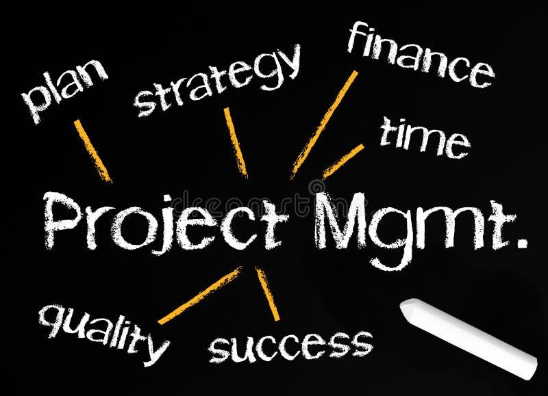 Fundo da gestão do projecto ilustração do vetor