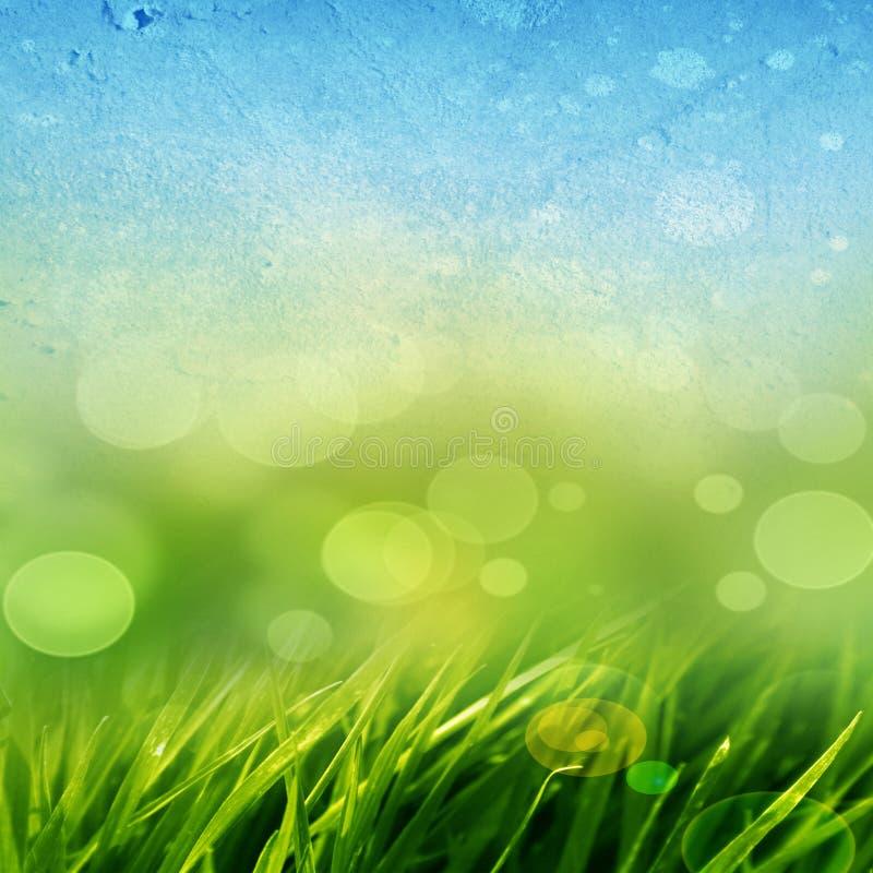 Fundo da grama verde ilustração stock