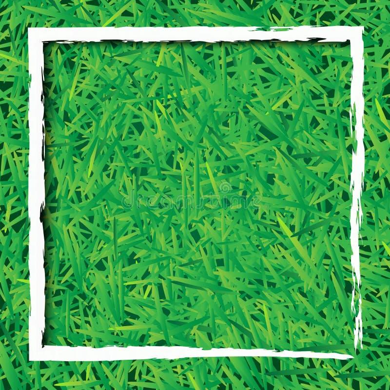 Fundo da grama verde com retângulo branco ilustração royalty free
