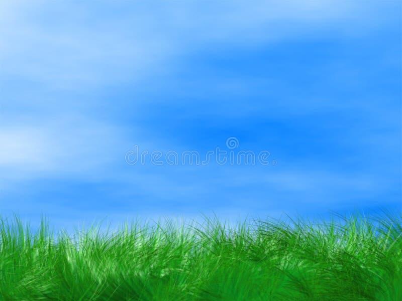 Fundo da grama verde e do céu azul fotografia de stock
