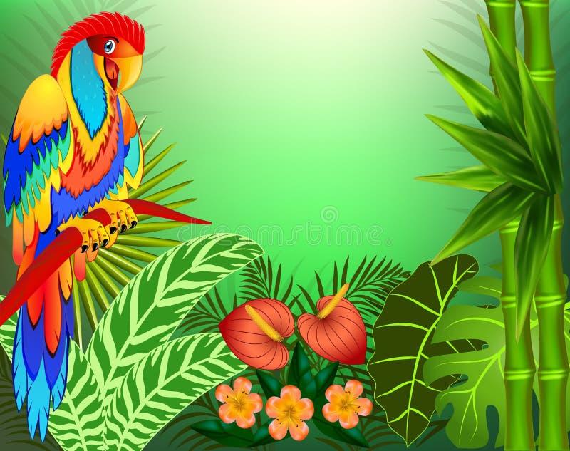 Fundo da ilustração com folhas e os papagaios tropicais ilustração do vetor