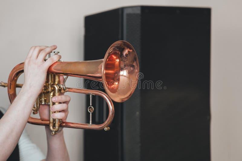 Fundo da música ao vivo, flugelhorn foto de stock royalty free