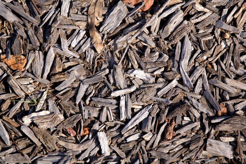 Fundo da madeira imagens de stock