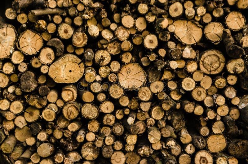 Fundo da madeira da madeira das pilhas A pilha da madeira registra o armazenamento para a ind?stria As serras cortaram os logs de fotos de stock royalty free