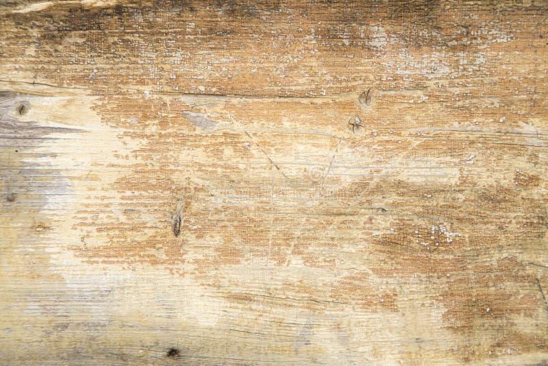 Fundo da madeira de Grunge foto de stock royalty free