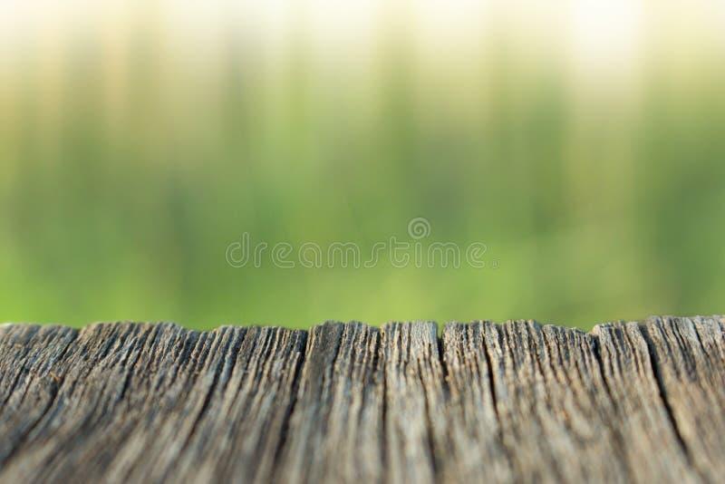 Fundo da madeira e da natureza do borr?o imagens de stock